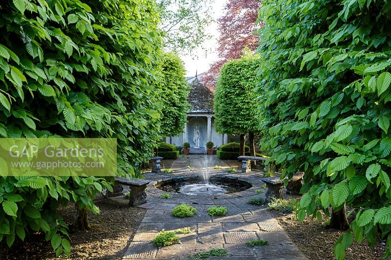 Formal pond with pleached Hornbeam trees and view to summerhouse at Watcombe, Somerset, UK.