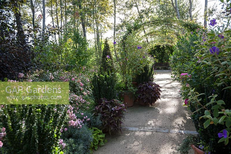 Gap Gardens Rose Arbour And Mixed Planting Le Jardin Anglais The