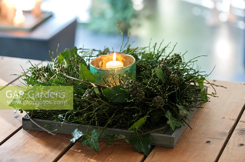Vaccinium myrtillus wreath and ivy cirrus with infructescence  