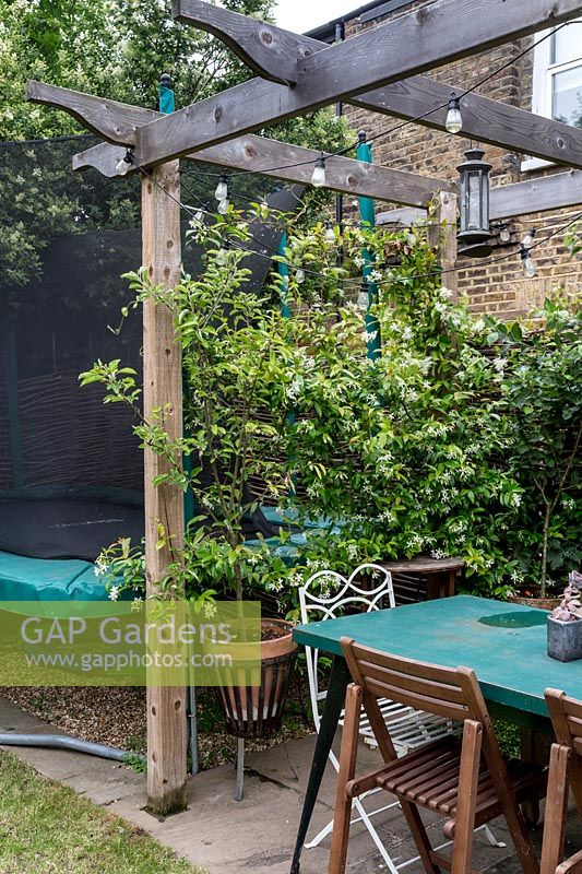 Cedar Pergola and children's play area with Espaliered Apple, Passiflora caerulea and Jasmine, North London.