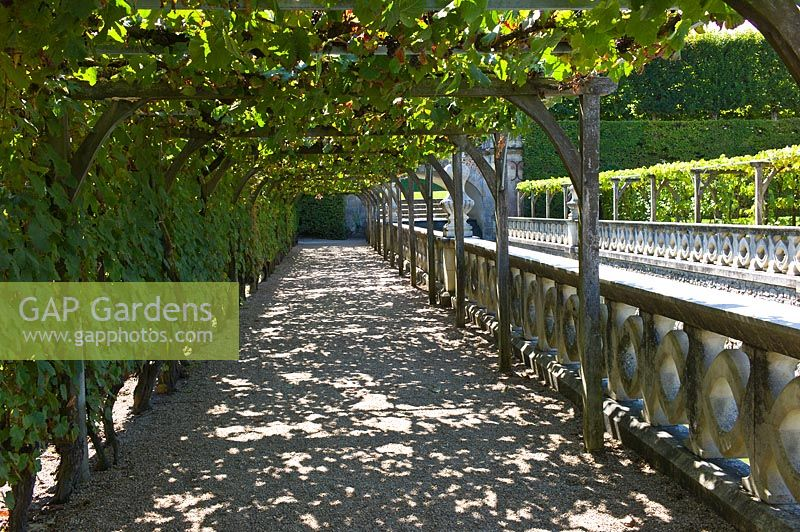Shaded vine covered path beside moat at Chateau de Villandry, Loire Valley, France