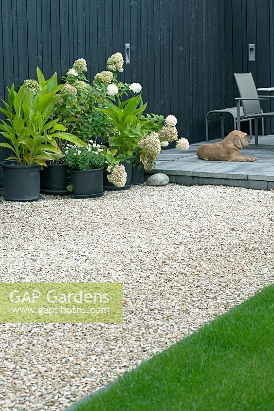 View of gravel garden with potted plants and dog on terraced patio.