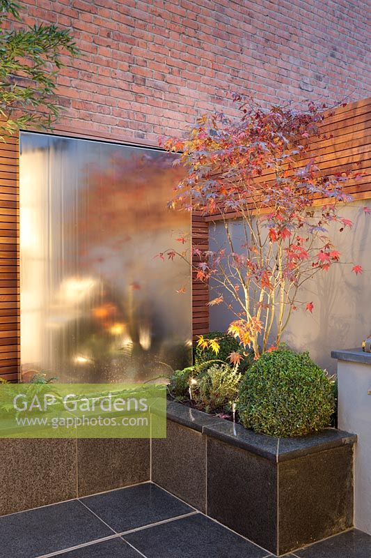 Steel water wall with Acer and outside lighting, London