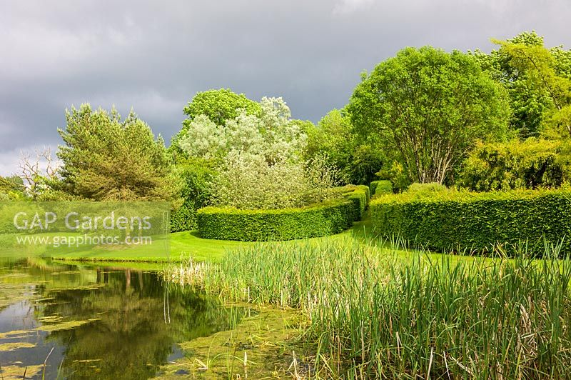 View of clipped Hornbeam hedge enclosures by lake. Plaz Metaxu Garden, Devon, UK.