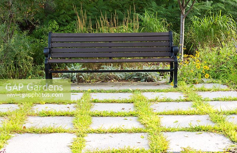 Crabgrass in paving with bench, Centre de la Nature, Laval, Quebec, Canada