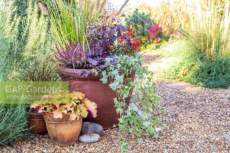 Specialising In Garden And Plant Photography