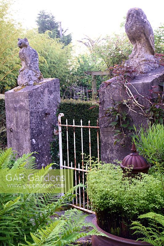 Gateposts in the form of the owl and the pussycat surrounded by lush ferns and climbing clematis at the Barn House, Glos in May