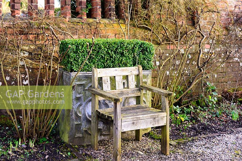 Wooden seat with clipped box in lead planter at Hodsock Priory, Blyth, Nottinghamshire