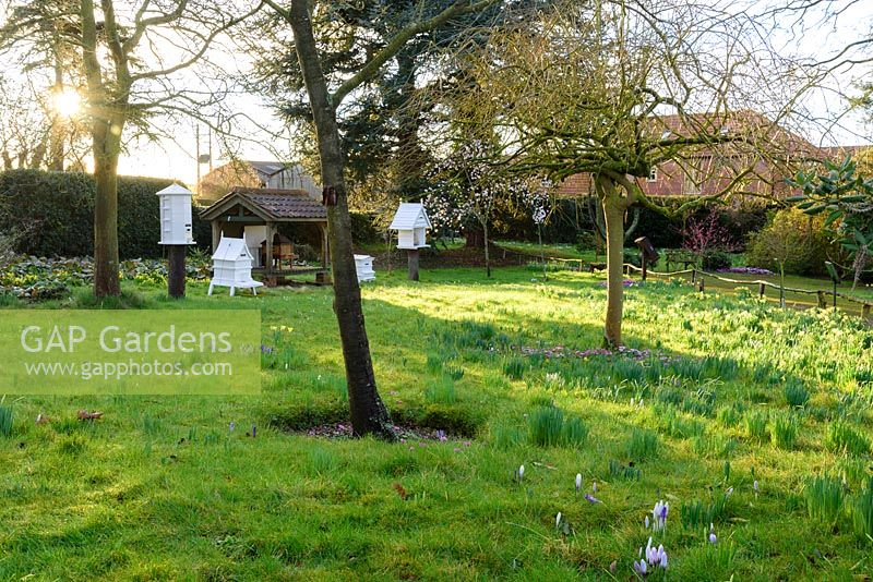 Victorian apiary at Hodsock Priory, Blyth, Nottinghamshire