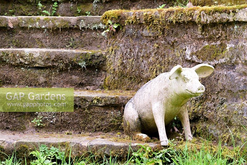 Stone pig on steps, Ross-on-Wye, Herefordshire