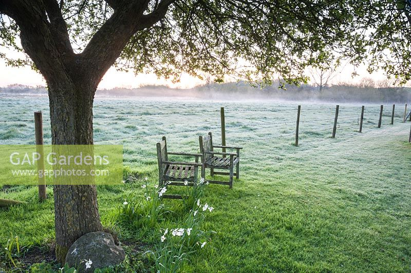 Mist rising at dawn with chairs under tree beside fence and fields, Stockbridge, Hampshire