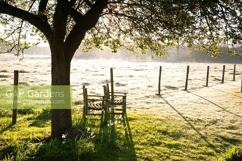 Chairs under tree with post and wire fence backlit against feilds, Stockbridge, Hampshire