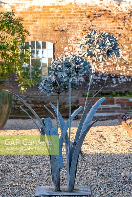 Metal sculpture of a flowering Agapanthus plant.