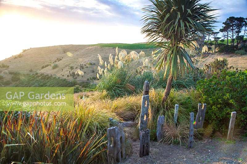 View from Fishermans Bay Garden to headland and sea. New Zealand