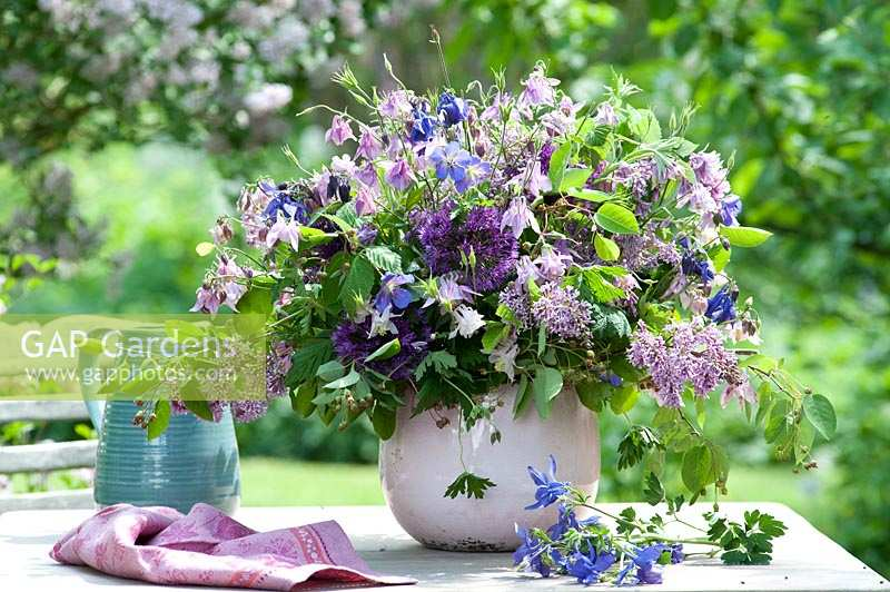 GAP Gardens - Blue violets early summer bouquet - Image No ...
