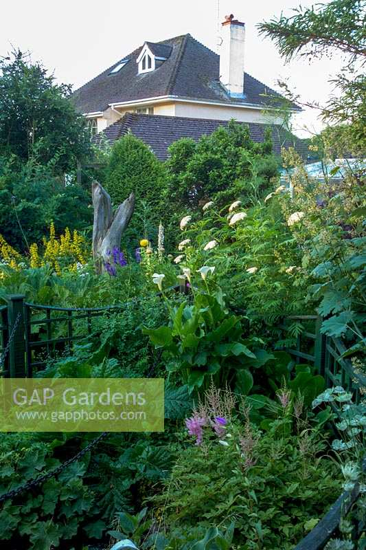 Garden beds and fencing, Bournemouth, UK