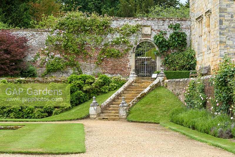 Steps from Italian Garden with rambling and shrub roses
