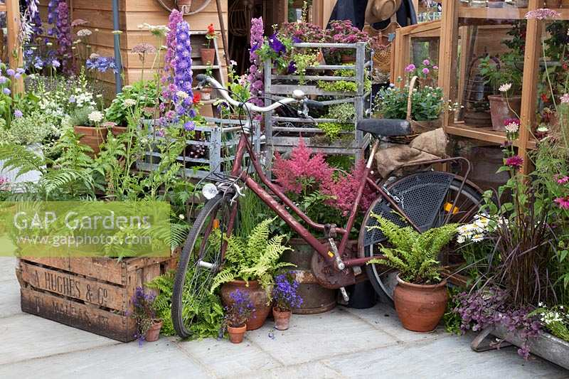Bicycle outside shed with accessories