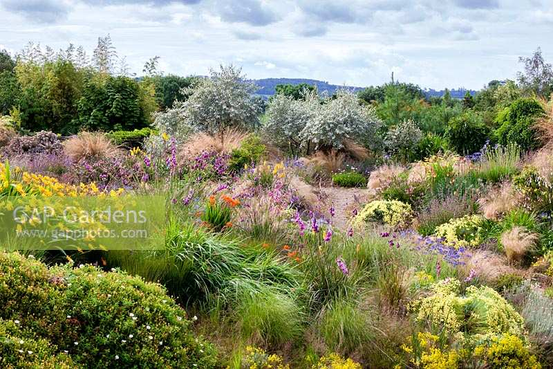 View across extensive mixed planting of perennials and shrubs