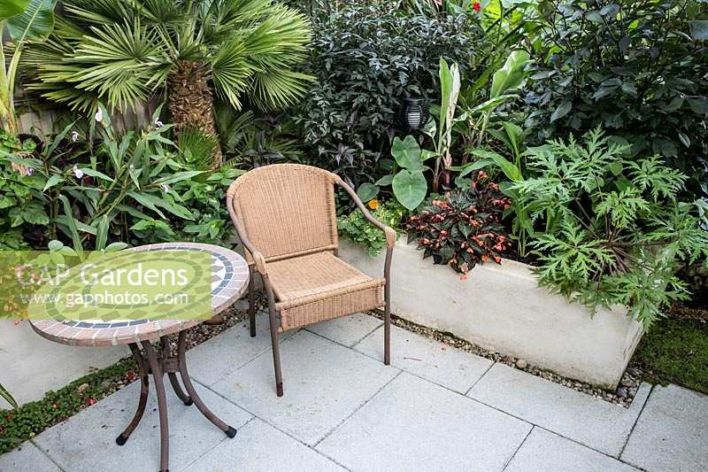 Patio surrounded with exotic plants