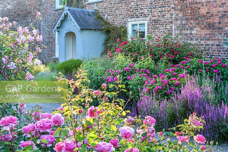 Flowerbeds with mixed perennials and shrubs including Rosa 'Princess Alexandra of Kent' and Rosa 'Rose de Rescht'.
