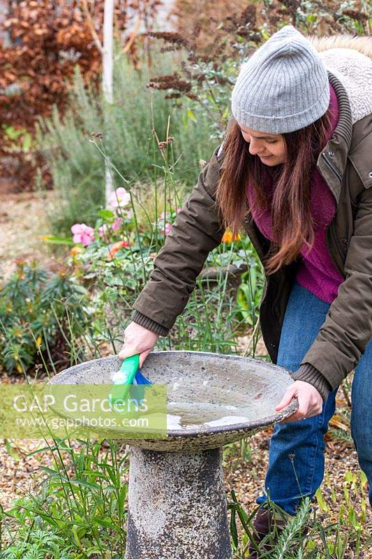 Woman washing bird bath with scrubbing brush and soapy water.