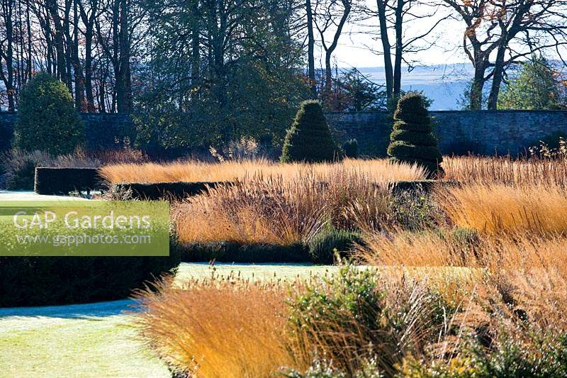 Grasses and herbaceous seed heads, yew hedges and topiary