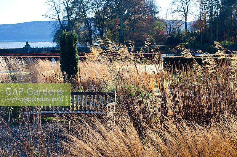 Grassses and perennials by bench