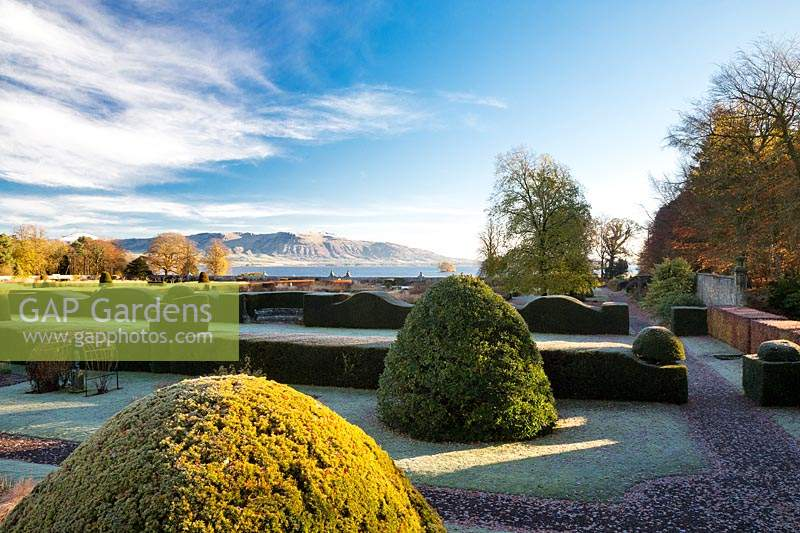 Clipped topiary shapes and hedges. Loch Leven and Lomond Hills
