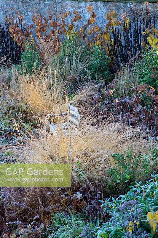 Frosted grasses and mixed herbaceous planting