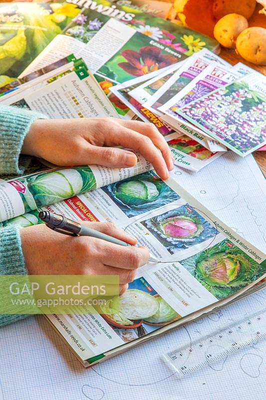 Woman circling seeds to order in printed plant catalogue