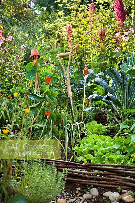 Vegetables in a raised bed with woven willow edge