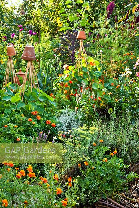 A potager - a mixed planting of herbs, vegetables and flowers. 