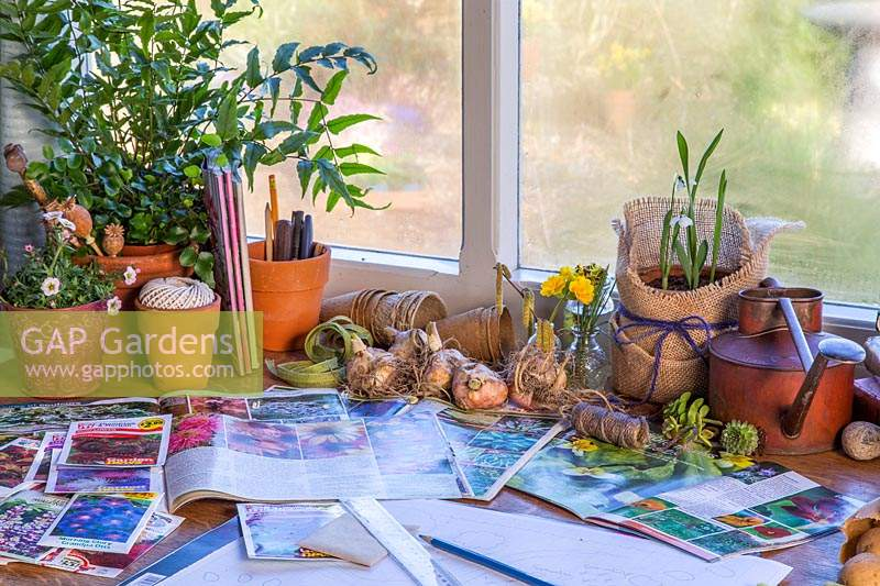 View of desk covered with seed catalogues, packets, bulbs and garden plans.