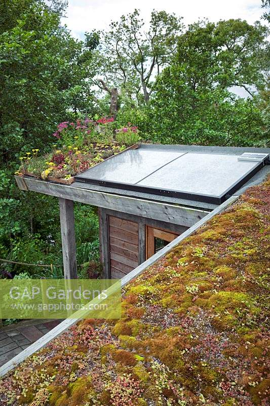 View of green roof and solar panels on top of Eco-house.