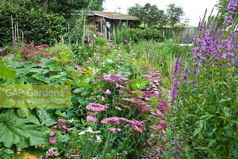 View towards the eco house and deck from the vegetable potager with mixed planting.