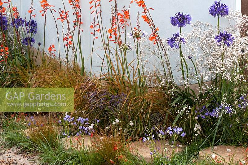 Stepping stones surrounded by mixed perennial planting. 'High Tide 2030 Garden 2030' - RHS Tatton Park Flower Show, 2016.