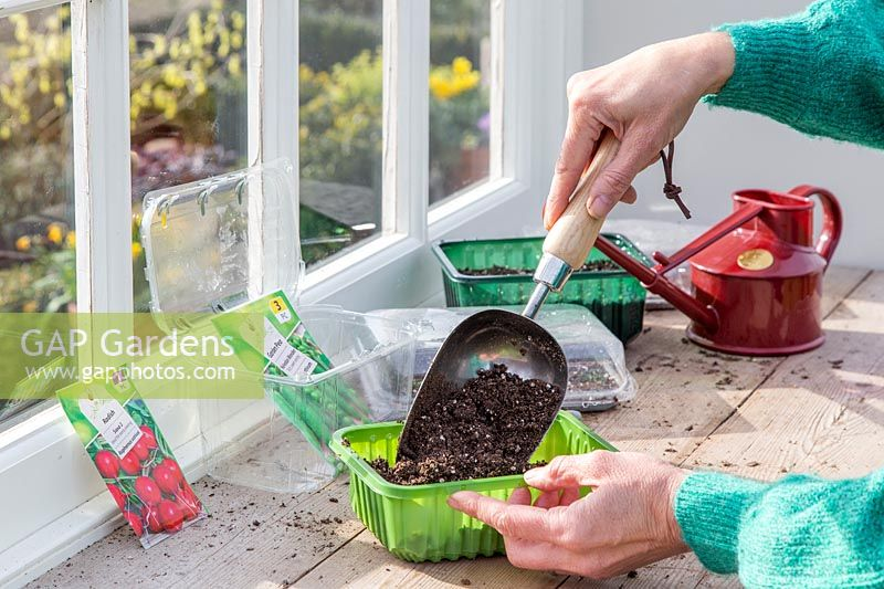 Woman adding compost using a scoop to recycled plastic trays prior to sowing seeds.
