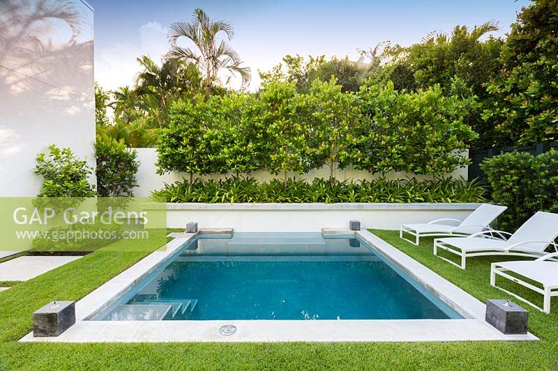 GAP Gardens - A swimming pool with loungers and a raised bed ... on