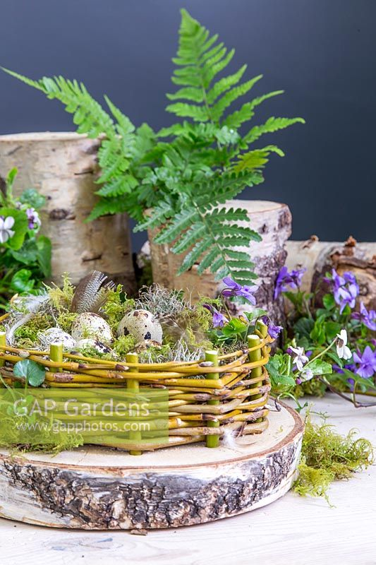 Finished Easter Eggs nest decorated with Viola odorata - Sweet Violet, logs