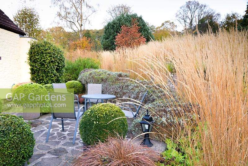 Seating area framed by clipped box and lavender at the bottom of a terraced garden.