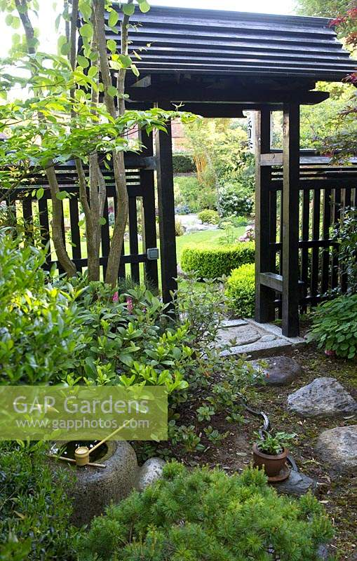 Stepping stone path to gate in Japanese themed garden
