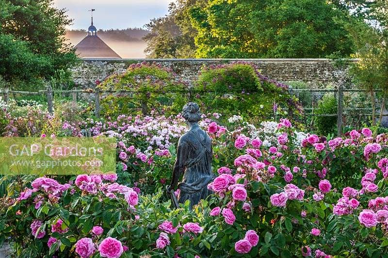 Gap Gardens Small Rose Garden At Parham Sussex Uk Image No