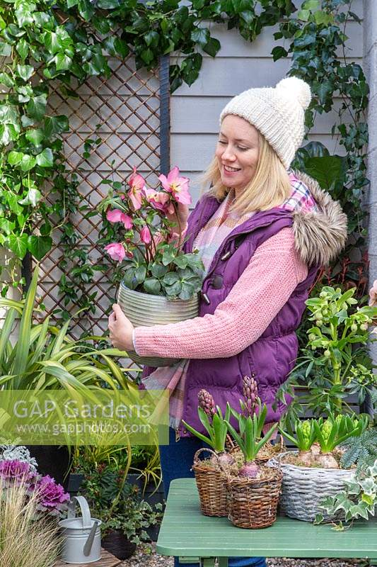 Woman holding pot of pink hellebore in early-spring courtyard setting.