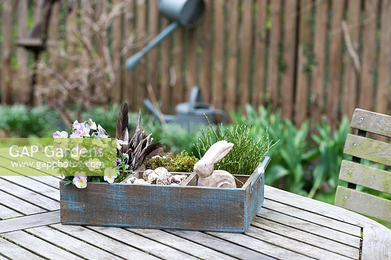 Easter decoration on a table in a spring garden. The wooden box is filled with Viola, quail eggs, a wooden Easter bunny, bilberry branches, moss and feathers.
