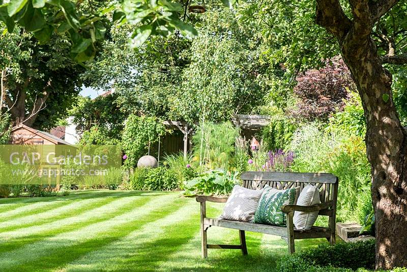 Striped lawn with bench and view to pergola and planting area