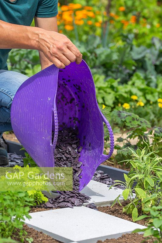 Woman adding slate mulch to checkerboard herb garden