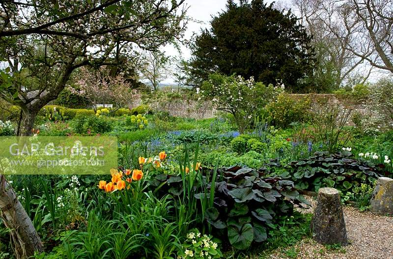 Spring borders and blossoming trees at Charleston, East Sussex.