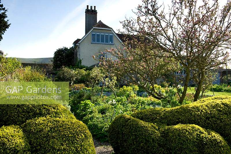 Topiary hedging in garden at Charleston