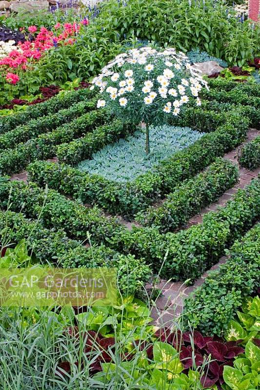 Saltwell Park 'Display' - RHS Chelsea Flower Show, 2005 with Buxus - Box parterre.
